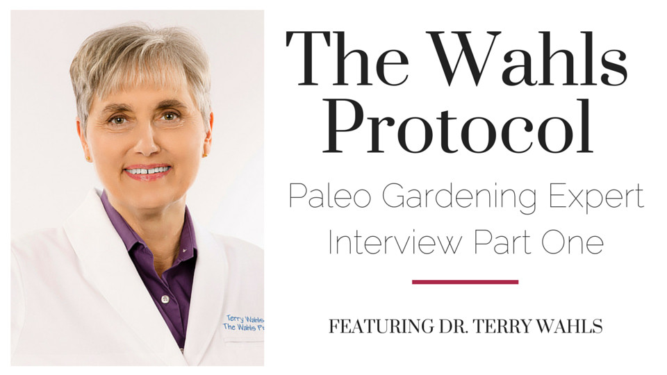 The Wahls Protocol Interview Part One