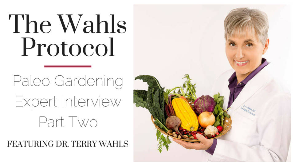 The Wahls Protocol Interview Part Two