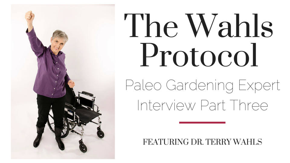 The Wahls Protocol Interview Part Three