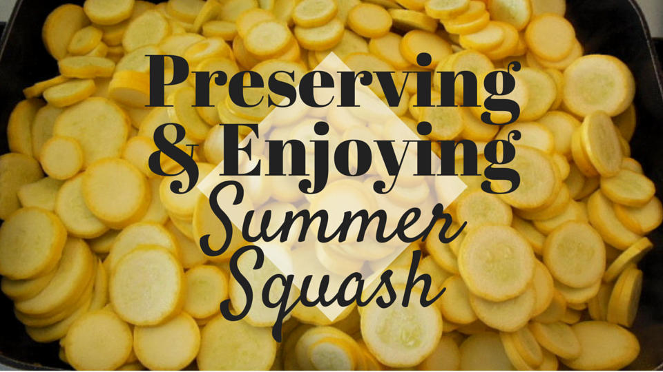 Squash Alert! Preserving & Enjoying Your Summer Squash