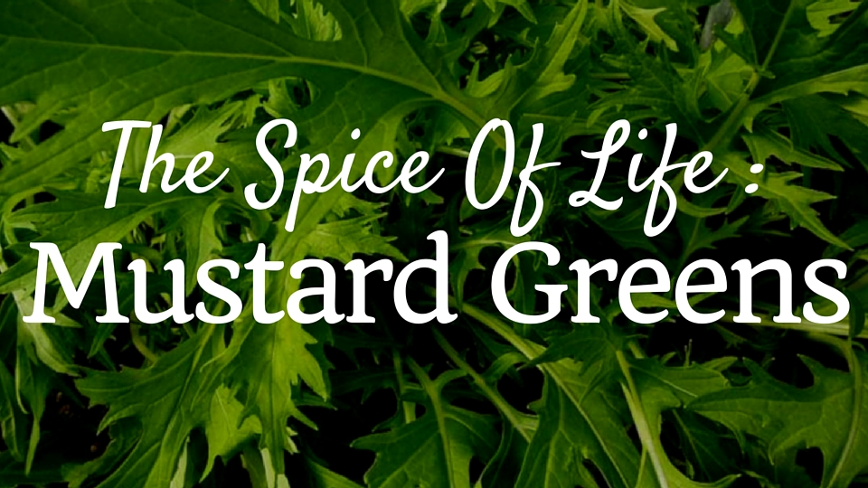 The Spice of Life: Mustard Greens