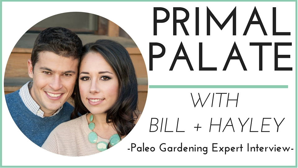 Primal Palate Paleo Spices and Backyard Chickens