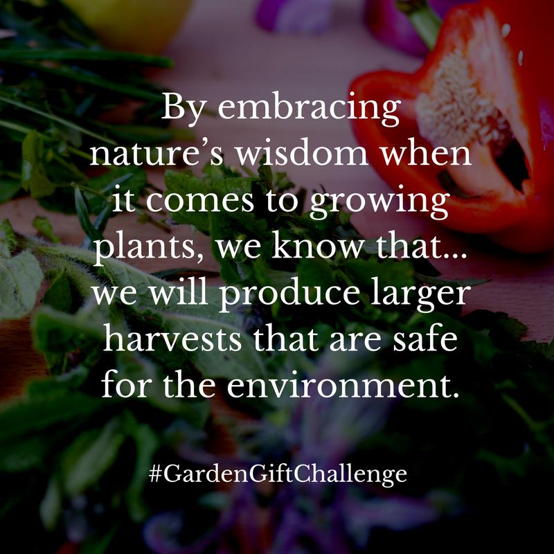 Wisdom Garden Lesson