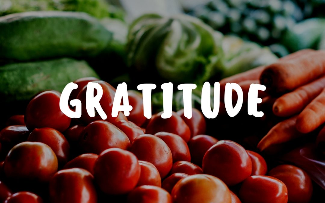 Experiencing Gratitude in the Garden – Garden Gift 11