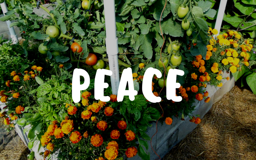 Peace in the Weed Free Organic Garden – Garden Gift 12