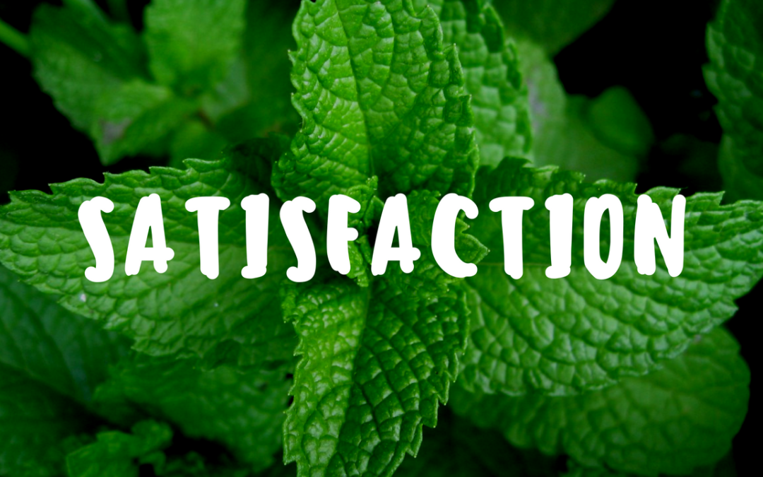 Satisfaction in a Productive Backyard Garden – Garden Gift 16