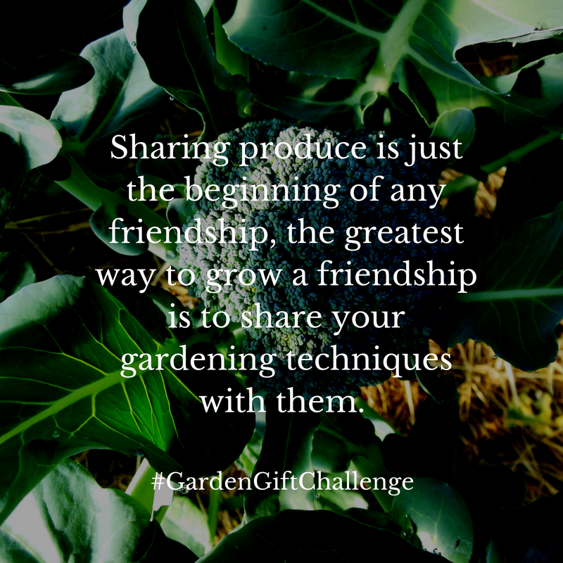 Friendship Garden Quote