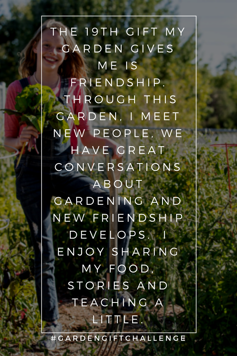 Friendship Pinterest Shareable