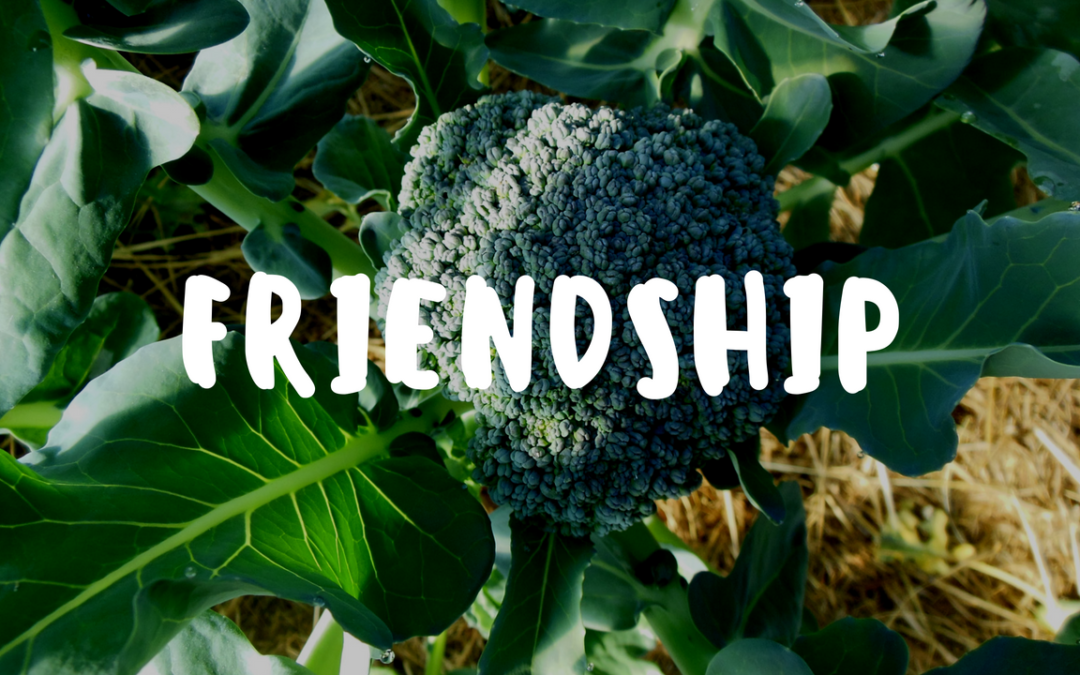 Friendship is Just One of the Many Gifts From the Garden! – Garden Gift 19