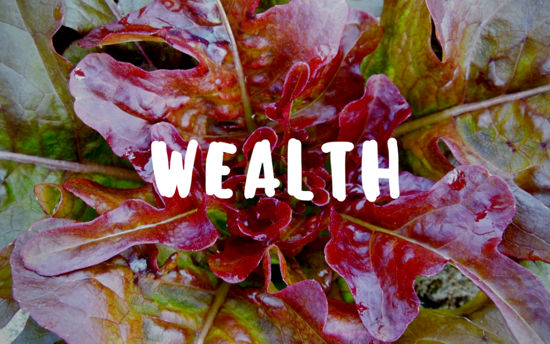 The Wealth My Garden Has Grown for Me – Garden Gift 20