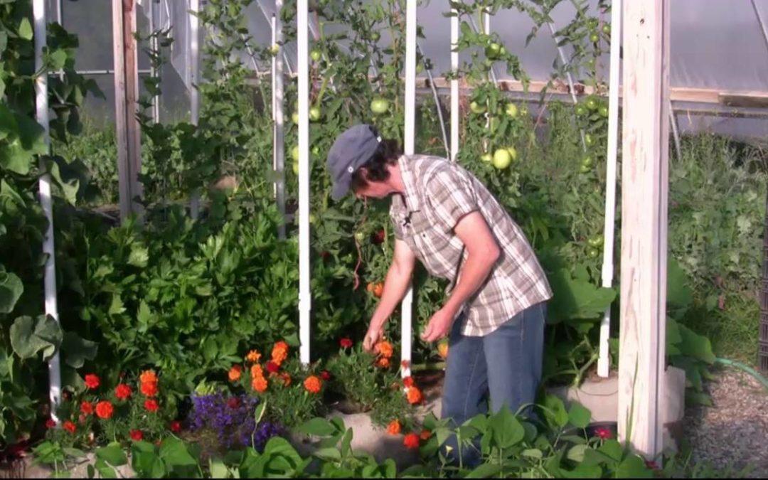 High Performance Garden Show Update